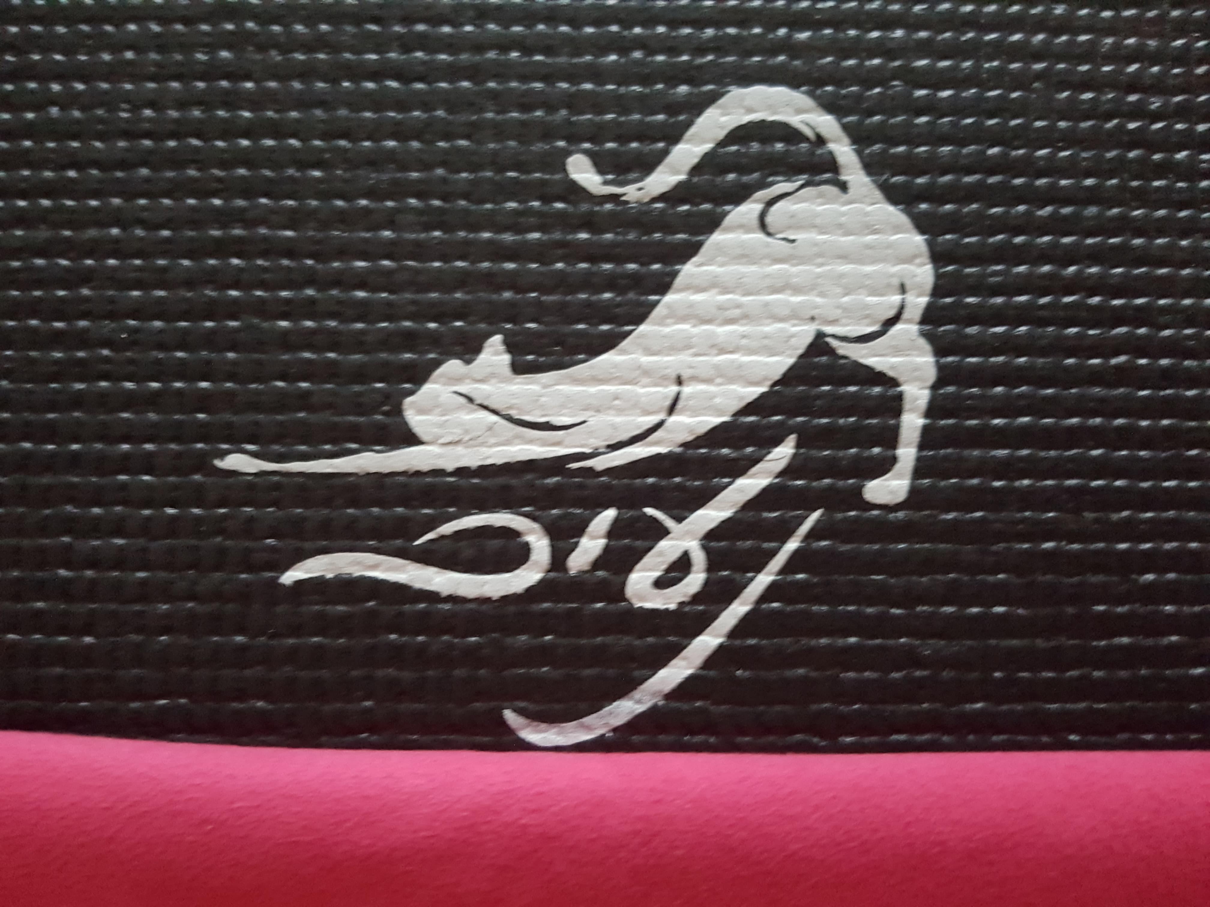 naim-logo